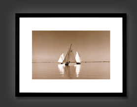 Sepia Marine Photography