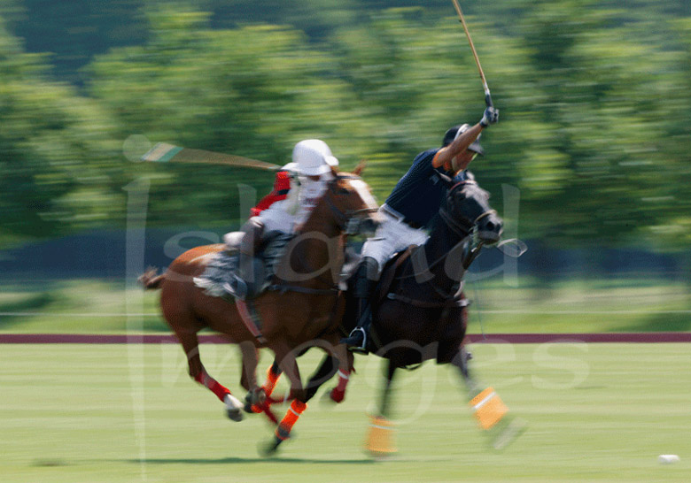 Polo Photographic Images in Colour