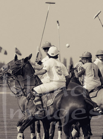 Polo Photography in Sepia