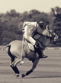 Sepia Polo Photography